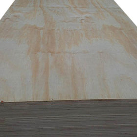 Construction Plywood from China (mainland)