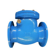 Swing type check valves from China from China (mainland)