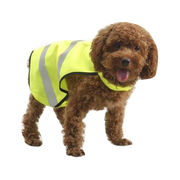 Reflective Safety Dog Apparel from China (mainland)