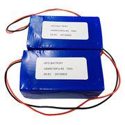 U9490150Fe 8S/25.6V/10Ah Lifepo4 Battery Pack from China (mainland)