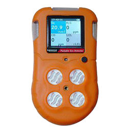 Multi Gas Detector (BX616) Can be Detected Combustible Gas, H2S, CO, O2 from Qingdao Tlead International Co. Ltd