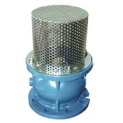 Flanged Foot Valve from China (mainland)