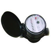 China Plastic Single-jet, Vane Wheel, Dry-dial Water Meter (Mini Type with Eight Number Wheels)