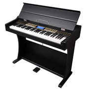 61-key professional performance-type electronic keyboard/with music player function