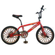 "20"" Freestyle Steel Frame Bike from China (mainland)"