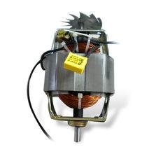Universal Motor from China (mainland)