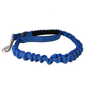 GO SAFELY 2-in-1 Dog Collar and Leash from Hong Kong SAR