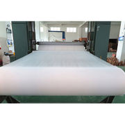 Polypropylene Spunbonded Fabric from China (mainland)