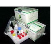 China LSY-10018 Drug residue ELISA test kit for Ampicillin detection