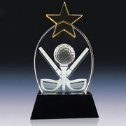 Crystal trophy from China (mainland)