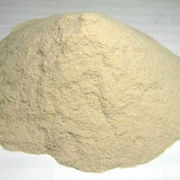 Wheat gluten flour from China (mainland)