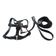 Dog harnesses from China (mainland)