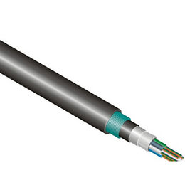 Armoured Fiber Optic Cable from China (mainland)