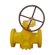 Plug Valve from China (mainland)