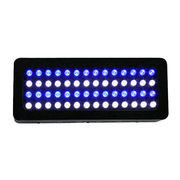 Dimmable aquarium light from China (mainland)