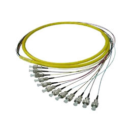 China 12 Core Bundle Optical Pigtails