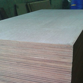 Container flooring plywood from China (mainland)