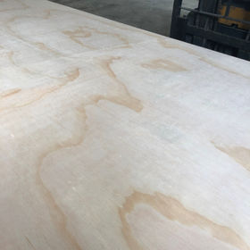 Pine plywood from China (mainland)