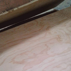 China Pine faced plywood