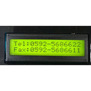 China LCD Module Display
