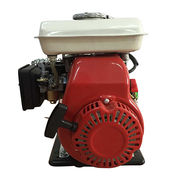 Gasoline engine from China (mainland)