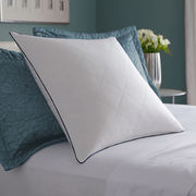 Feather pillow from China (mainland)