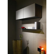 lacquer wall cabinet from China (mainland)