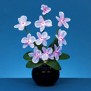 Flower lamps LED lighting from China (mainland)