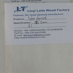 Bleached poplar plywood from China (mainland)