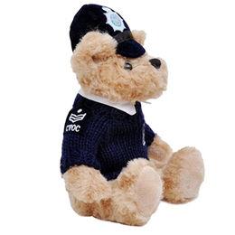 Plush Teddy Bear from China (mainland)
