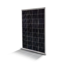 Polycrystalline Solar Panel from China (mainland)