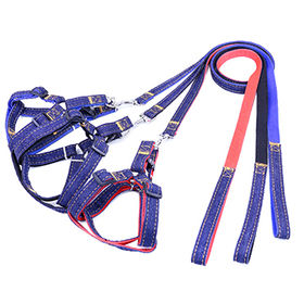 Pet Traction Belts from China (mainland)