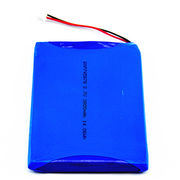 Li-polymer Battery from China (mainland)
