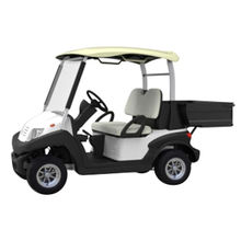 Electric carts from China (mainland)