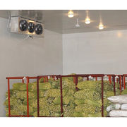 Frozen Food Storage Equipment from China (mainland)