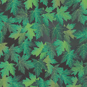 Maple leaf fabric from Taiwan