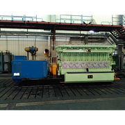 Natural gas generator from China (mainland)