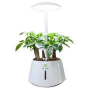 Indoor hydroponic systems from China (mainland)