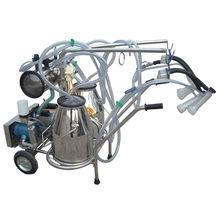 Vacuum Pump Type Double Bucket Milking Machine from India
