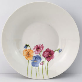 China Porcelain soup plate