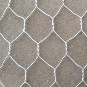 hexagonal iron wire mesh from China (mainland)