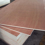Film-faced plywood from China (mainland)