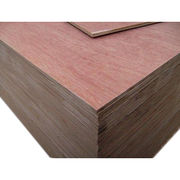 Poplar plywood from China (mainland)