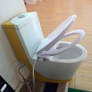 China Bidet toilet, CB3600 combined bidet function with slow down toilet seat cover, dual nozzles