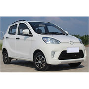 Mini electrical car SUV from China (mainland)