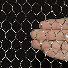 Electronic Galvanized Hex Wire Netting from China (mainland)