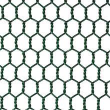 Galvanized Hex Wire Netting from China (mainland)