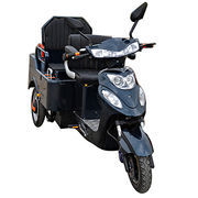 3-wheel pedal electric trike Manufacturer
