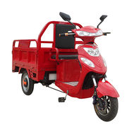 3-wheel pedal electric tricycle Manufacturer