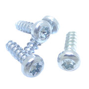 China Self tapping screws